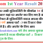 BCom 1st Year Result 2018