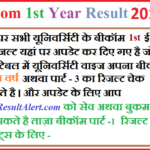 BCom 1st Year Result 2019