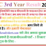 BSC 3rd Year Result 2019