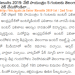 bie.tg.nic.in Inter Results 2019