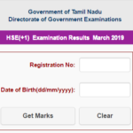 www.dge2.tn.nic.in 11th Results 2019