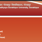DDU University BA 1st Year Result 2019