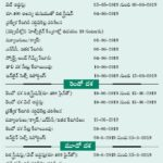 TS Dost First Seat Allotment 2019